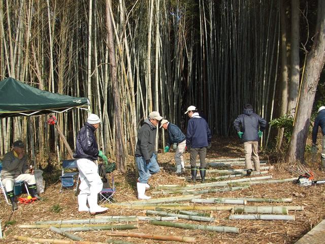 竹林整備活動の様子